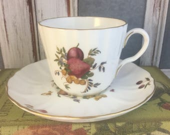 Delecta Fruit Strawberry Pear Plum Butterfly Numbered Tea Cup and Saucer Fine Bone China Vintage England Made Lovely EVC