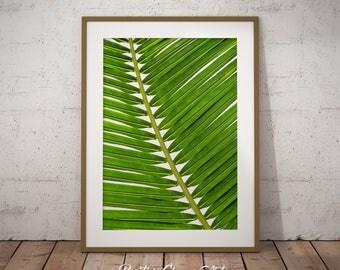 Palm Leaf Art Print, Palm Leaf, Printable Palm Leaf, Tropical Leaf Decor, Palm Leaves Print, Palm Leaves, Palm Leaf Wall Art, Tropical Leaf