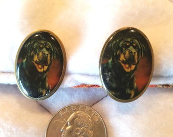 Pair of Rottweiler Face Clip On Earrings Goldtone & Acrylic  Free Shipping