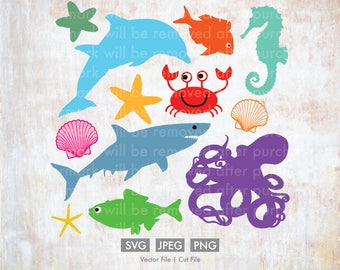 Sea Creatures Pack - Vector, Silhouette, Cricut Cut File, PNG, SVG, Download, Fish, Shells, Ocean, Shark, Starfish, Octopus, Seahorse