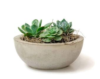 Concrete Bowl, Concrete Planter, Succulent Plant Pot, Succulent Planter, Succulent Bowl, Rustic Home Decor, Gift idea