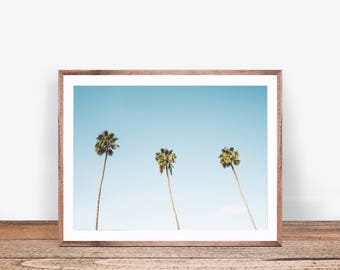 Palm Print, Palm Tree Photo, Tropical Art, Palm Tree Print, Beach Print, Palm Tree Art, California Print, Tropical Art Print, Beach Decor