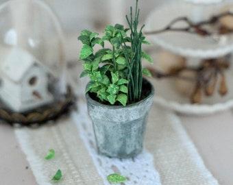 1:12 Miniature Herb Pot