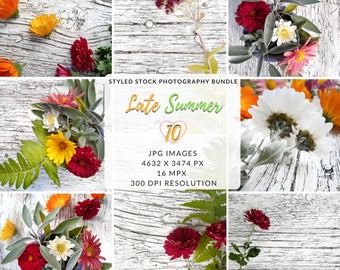 Floral Photo Backdrop, Floral Printable Pages, Flower Photo Bundle, Floral Mockup, Styled Photo Shoot, Flat Lay Bundle, Styled Stock Bundle