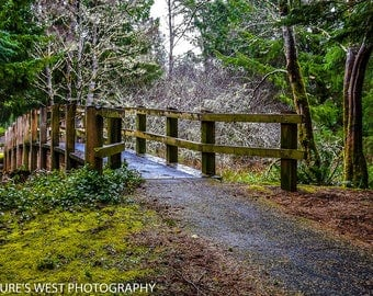 Oregon Coast, Landscape Photography, Nature Photography, Fine Art Photography, Wall Art, Home Decor, Gift