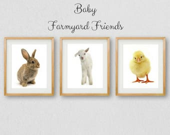 Baby Animal Prints, Nursery PRINTABLES, Nursery Wall Art, Farm Animals, Rabbit Print, Animal Wall Art, Animal Prints, Kids Room Print, Chick
