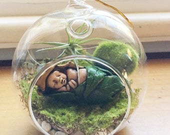 Terrarium Kit, Garden decor, Airplant, Sleeping Fairy Baby, Ooak