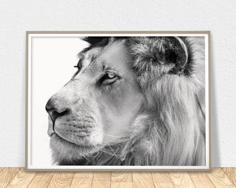 African Lion Wall Art - Printable Poster, Lion Wall Decor, Black And White, Lion Photo Print, Nursery Lion Art, African Animals, Lion Face