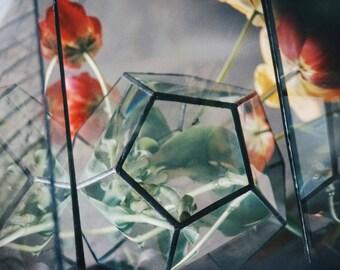 Glass geometric Terrarium, Glass dodecahedron, Glass Planter, Home decor, Wedding table decor, glass florarium