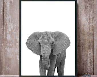 Elephant Print, Black and White, Elephant Art, African Art, African Animal, Safari Animal, Animal Print, Elephant Photo