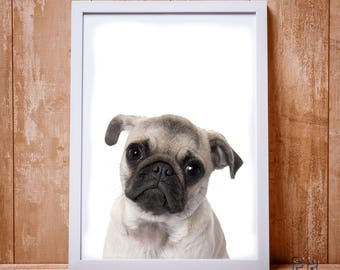 Pug Print, Dog Print, Dog Wall Art, Kids Room Decor, Nursery Decor, Dog Poster, Dog Photo, Nursery Print, Bedroom Print, Dog Decor, Dog Art