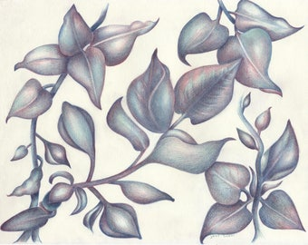 Spring Lilac Leaves Notecard