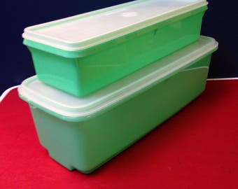 Tupperware (both containers for the price)