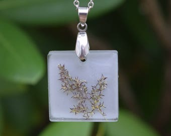Real Flower Necklace / Square Shaped Pendant with Embedded Seeding Grass Sprig