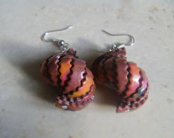 """""Fimo earrings shell shellfish """