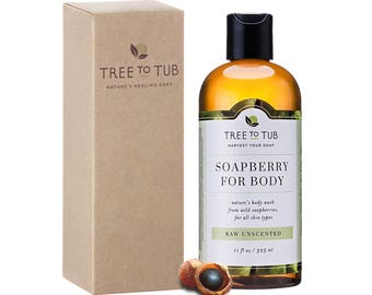 Dry Skin Liquid Soap, Ayurvedic Body Wash, Ph Balanced Soap, Vegan Detox Soap, Herbal Liquid Soap, Organic Bodywash, Best, Eczema Body Wash
