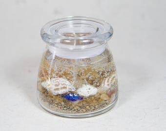 Unscented Gel Wax Candle - Blue Hermit Crab