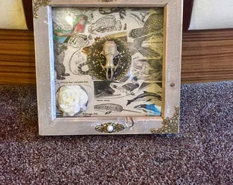 Framed Ornate Rat skull