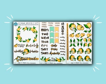 Citrus Monthly Kit | Monthly Planner Sticker | Bullet Journal Stickers | Stickers for Planners & Journals | Journaling Supplies