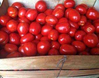 Tomatoes seeds, 60x  pomodoro seeds, gardening, greek tomato seeds, non gmo, organic,