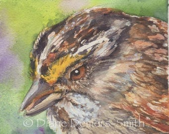 White throated sparrow bird card, notecard,watercolor card,Diane Demers-Smith,dianeartistpotter ,greeting cards, stationary, birds series