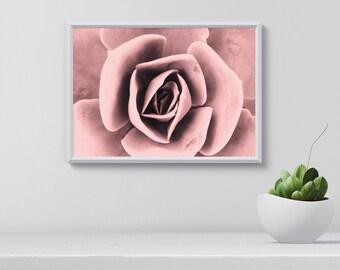 Flower Wall Art pink flower wall art | etsy