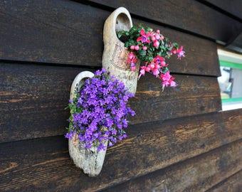 Flower Photography, Digital Download, Holland