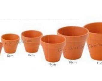 Terracotta pot (several sizes available)