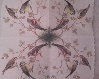 Chickadees napkin