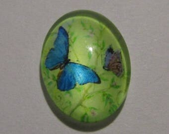 oval glass cabochon 18mm * 13mm butterfly theme models to choose from
