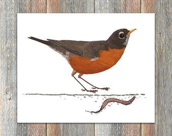 American Robin Bird Art