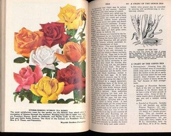 Steampunk Gardener's Bible: The Illustrated Wise Garden Encyclopedia, 1951 Edition