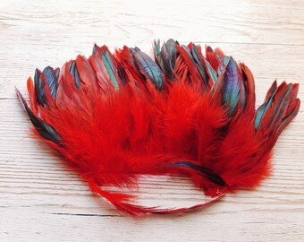 Long red feathers