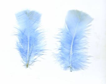 Sky blue down feathers