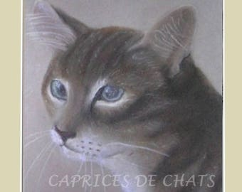 reproduction of my original drawing in pastel on canson paper: thoughtful cat
