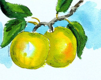 Yellow apples, watercolor, pen and ink, original, painting, 8 x 10