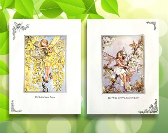 Wild Cherry Blossom & Laburnum Flower Fairy Print from vintage book. Woodland Fairies Nursery themed gift for girl. Illustration for framing