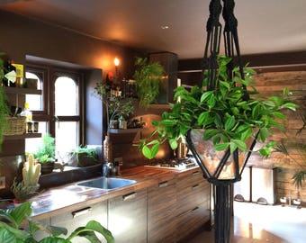 Macrame Plant Hanger, Black, Bohemian, Home decor, Rustic, Weave, Natural