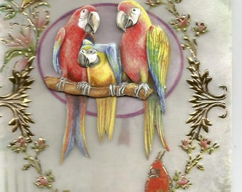 Animals, 3d card, handmade on parchment paper, bird - birthday thank you, get well, parrots, macaws category
