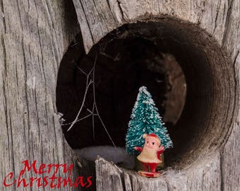 Santa in a fence hole