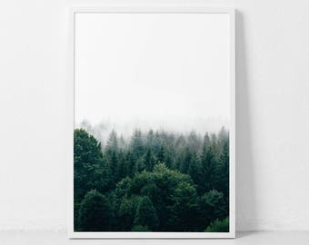 Forest Print, Forest Photography, Nature Prints, Forest Wall Art, Forest Art, Wilderness Poster, Woodland Prints, Modern, Printable Art