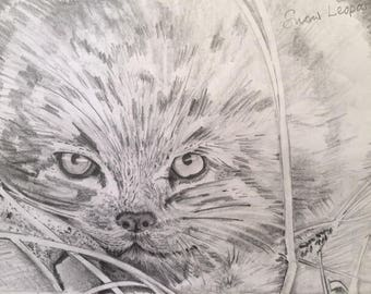 Sketch of Snow Leopard