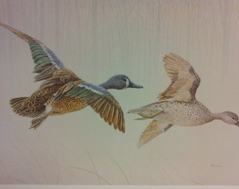"""Wildlife Art Signed Print """"Gooses"""" by Mark Wynen Limited Edition Print"""