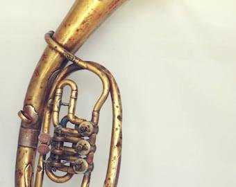Hanging Trumpet lamp