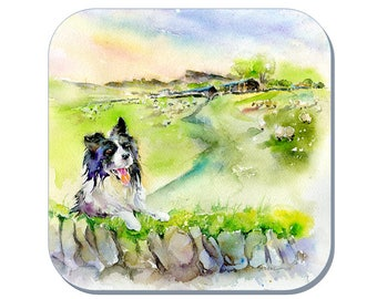 Border Collie - Dog Coaster (Corked Back). From an original Sheila Gill Watercolour Painting