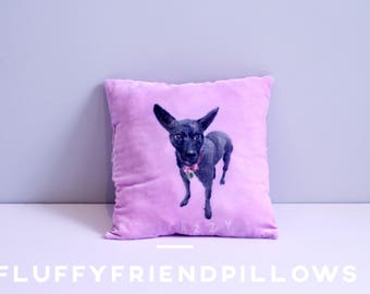 hand painted 100% silk velvet pet portrait pillow15*15