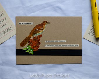 Handmade Blank Greeting Card (Flat A6) - Brown Thrasher - Golden Guide to BIRDS