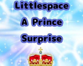Littlespace A prince surprise box!