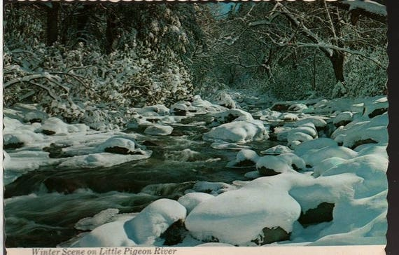 Winter Scene on Little Pigeon River – Great Smoky Mountain National Park – Vintage Souvenir Postcard