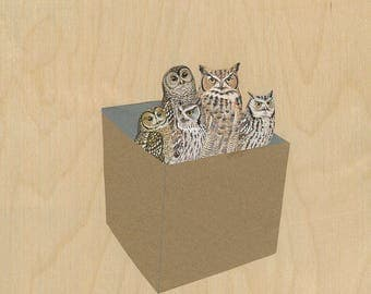 An assortment of owls. Original mixed media collage by Vivienne Strauss